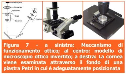 Microscopio ottico-Professione Oculista-ECM-MEI